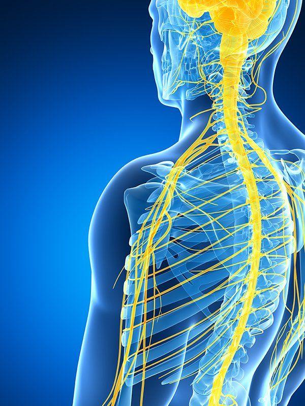 Osteopatía Fuengirola
